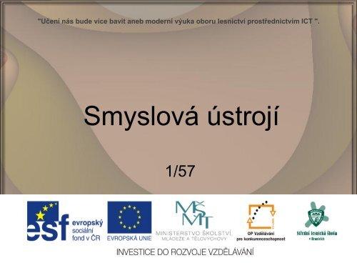Smyslová ústrojí - Projekt EU
