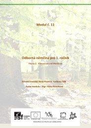 Klimazonen und Waldarten - Projekt EU