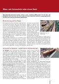 Wärmesanierung und Artenschutz an Gebäuden - proKlima Hannover - Seite 7