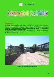 PRO LOCO BINAGO 1 L'azienda agricola Scariot Walter è ben nota ...