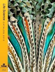 2013 Promega catalogue