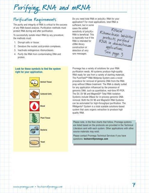 Transfer Rna Manual Guide