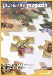 Die Welt der Wildbienen - Pro Natura