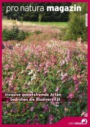Invasive gebietsfremde Arten bedrohen die Biodiversität - Pro Natura