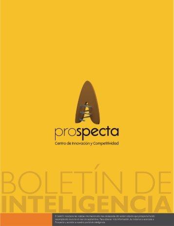 Calzado - Prospecta