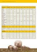 Beispiele für Futtermischungen von Sauen - ProteinMarkt - Seite 5