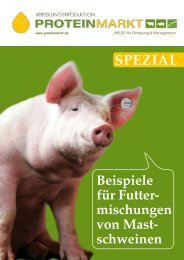 Beispiele für Futtermischungen von Mastschweinen - ProteinMarkt