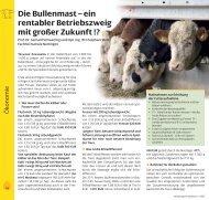 Die Bullenmast – ein rentabler Betriebszweig mit ... - ProteinMarkt