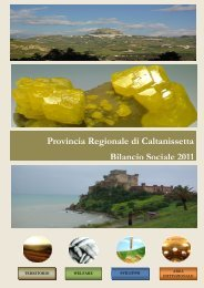 bilancio sociale 2011 - Provincia Regionale di Caltanissetta