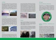 flyer 1 - Archäologie in Sachsen