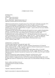 Curriculum vitae sino al 09.03.2011. Luigi Mele. Europeo[1]