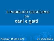 Il pronto soccorso per cani e gatti - Provincia di Piacenza