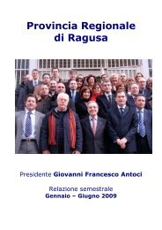 Relazione 1º semestre 2009 - Provincia di Ragusa