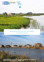Ontwikkelingsvisie Blauwestad in het Oldambt - Provincie Groningen