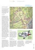 Die Armentarawiesen - Seite 5