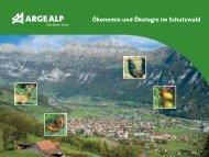 Ökonomie und Ökologie im Schutzwald