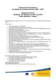 Niederschrift der Sitzung des Begleitausschusses vom 06. Juni 2013