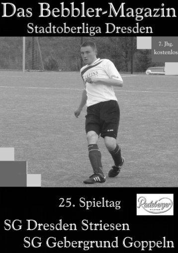 Das Bebbler-Magazin - 25. Spieltag