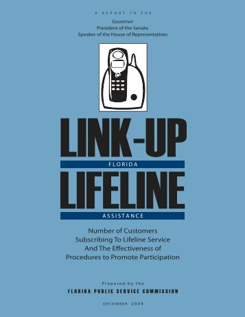 Number of Customers Subscribing To Lifeline Service And The ...