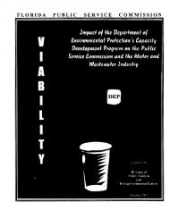 Impact of the Department of Environmental Protection's Capacity ...