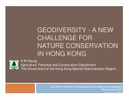 GEODIVERSITY - A NEW CHALLENGE FOR NATURE ...