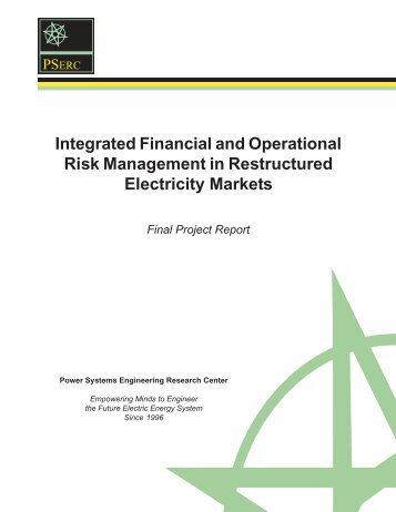 Integrated Financial and Operational Risk Management in ...