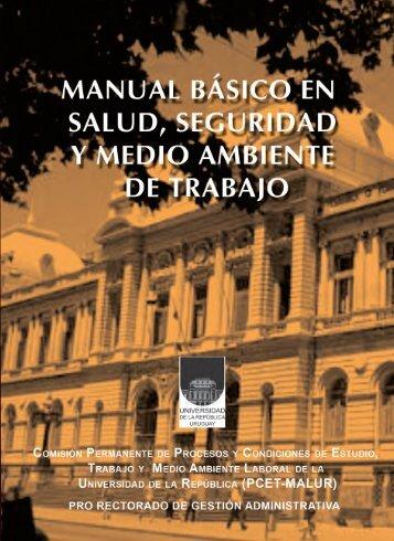 Manual básico en salud, seguridad y medio ambiente de trabajo (.pdf)