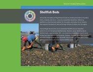 Shellfish Beds - Puget Sound Partnership