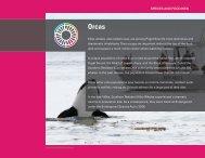 Download PDF - Puget Sound Partnership