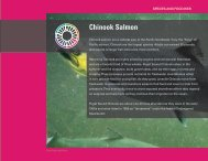 Species and Food Web - Puget Sound Partnership
