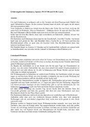 Erfahrungsbericht Salamanca, Spanien WS 07/08 und SS 08, Laura ...