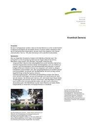 Krankheit Demenz - Kantonale Psychiatrische Dienste - Sektor Nord