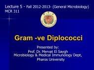 Neisseria gonorrhoeae - Pharos University in Alexandria
