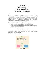 BCM 112 Biochemistry I Week 4 Practical
