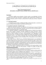 A AMAZÔNIA E AS MUDANÇAS CLIMÁTICAS Priscilla ... - PUC-Rio