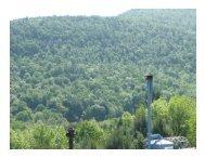 y - Pennsylvania Public Utility Commission