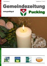 PDF - Gemeinde Pucking