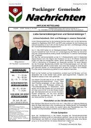 Datei herunterladen - .PDF - Gemeinde Pucking