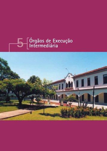 Órgãos de Execução Intermediária - PUC Minas