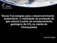 Novas Tecnologias para o desenvolvimento sustentável: a ... - pucrs