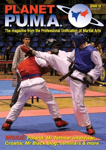 Issue 19 - Professional Unification of Martial Arts