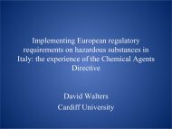 Hazardous Chemicals, small firms and the impact of ... - PuntoSicuro