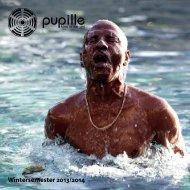 Wintersemester 2013/2014 - Pupille