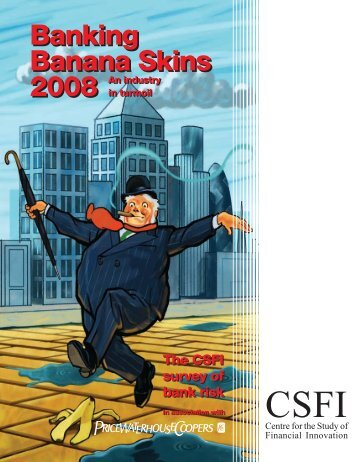 Banking Banana Skins 2008 - PricewaterhouseCoopers
