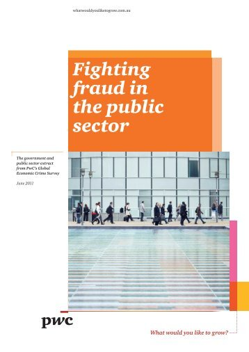 Controlling fraud in the public sector - PricewaterhouseCoopers