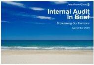 Internal Audit In Brief