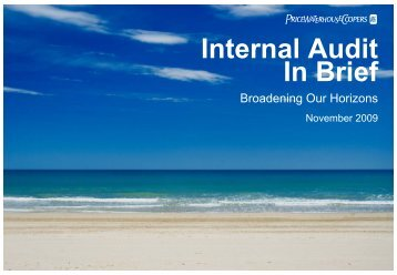 Internal Audit In Brief