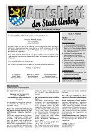 Nr. 12 / 15.06.2012 - Stadt Amberg