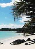 Doing business in Comoros - Permanent Committee For Organizing ... - Page 5