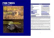 FSM-TIMES issue 21 (October-December 2009) - Striped Mouse